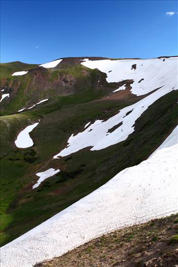 Trail Ridge View 2 by D Scott Smith