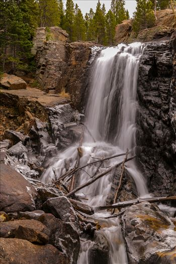Alberta Falls, Rocky Mountain National Park No 1 by D Scott Smith