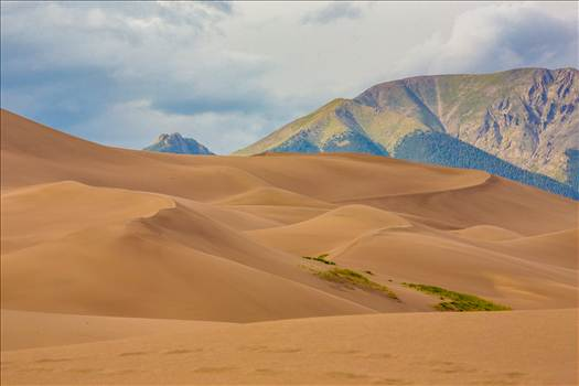 Great Sand Dunes 1 by D Scott Smith