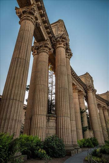 Palace of Fine Arts 2 by D Scott Smith