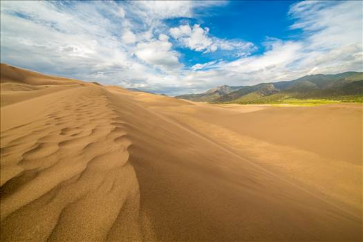 Great Sand Dunes 4 by D Scott Smith
