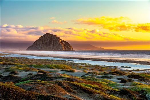 Morro Bay at Sunset by D Scott Smith
