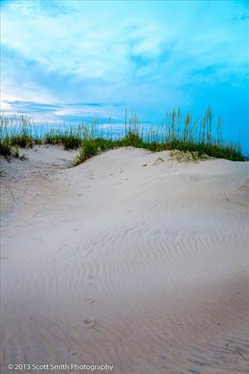 Sunset Dune -