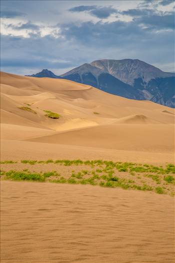 Great Sand Dunes 10 by D Scott Smith